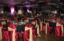 Rent Table Linens in Auburn IN, Kendallville, Waterloo, Butler, Ft. Wayne, Northeast Indiana