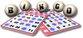 Rental store for Bingo Game Cards  100pk in Auburn IN