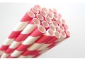 Rental store for 24ct Black   White Striped Paper Straw in Auburn IN
