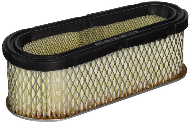 Where to find Briggs Air Filter in Auburn