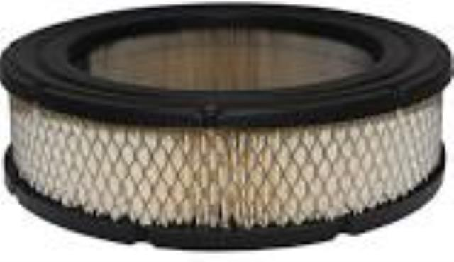Where to find Filter, Air, Briggs  692519 in Auburn
